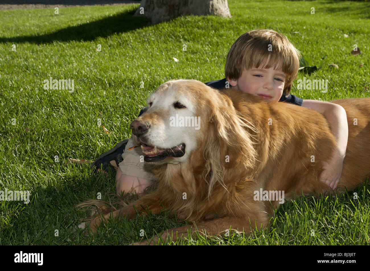 Boy and dog resting in the grass Stock Photo