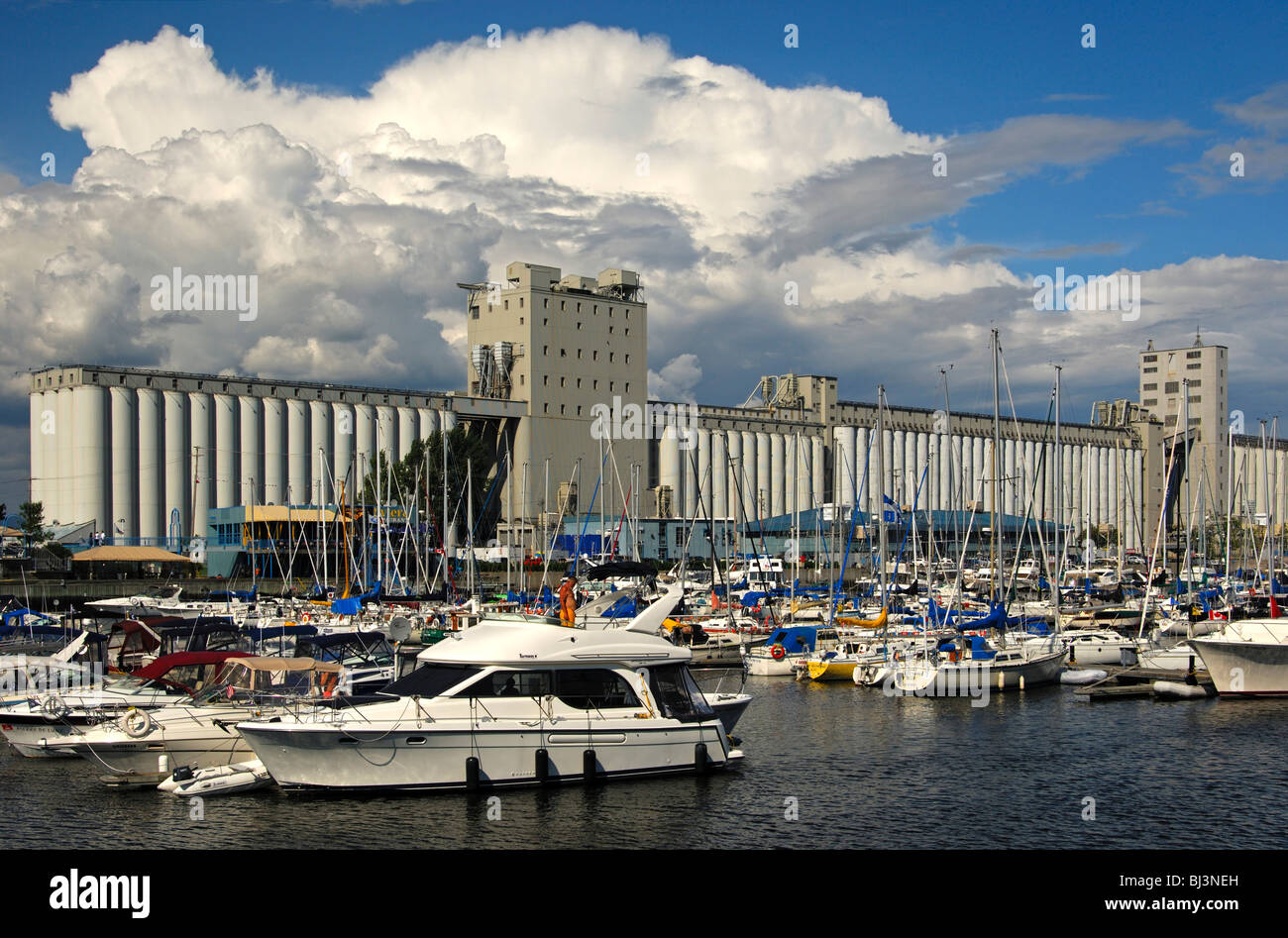 Marina, in the back a grain silo of the Bunge company in the port of Quebec City, Canada - Stock Image