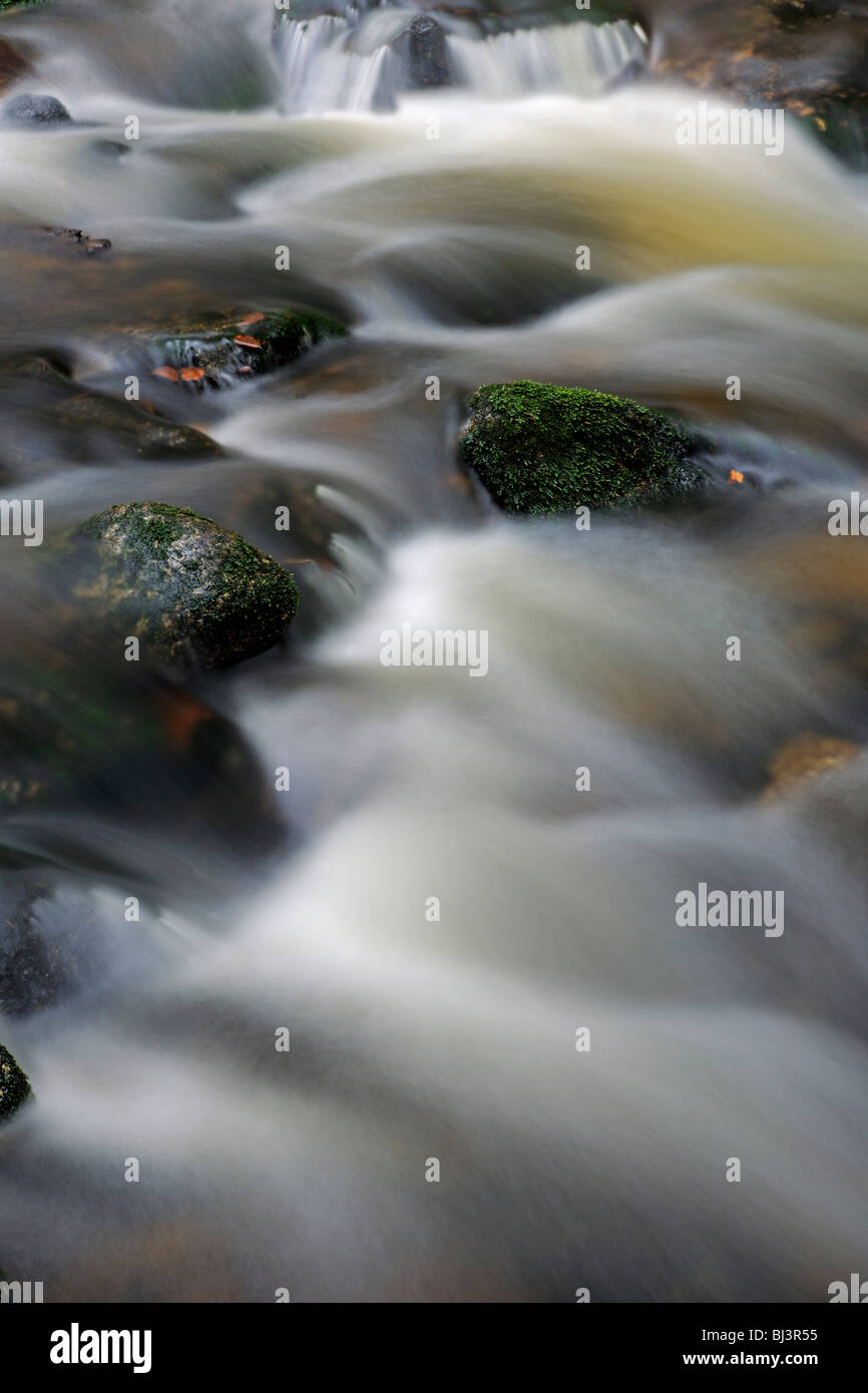 Flowing movement, close-up with snow, ice, Kleine Ohe mountain stream, Nationalpark Bayrischer Wald Bavarian Forest Stock Photo