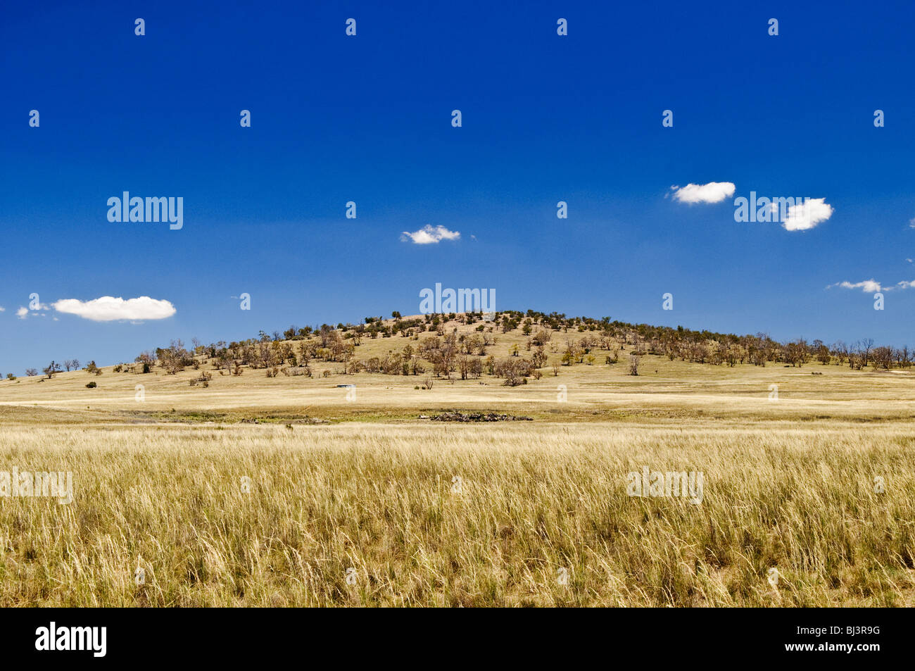 A grassy field and hill in the Australian outback - Stock Image