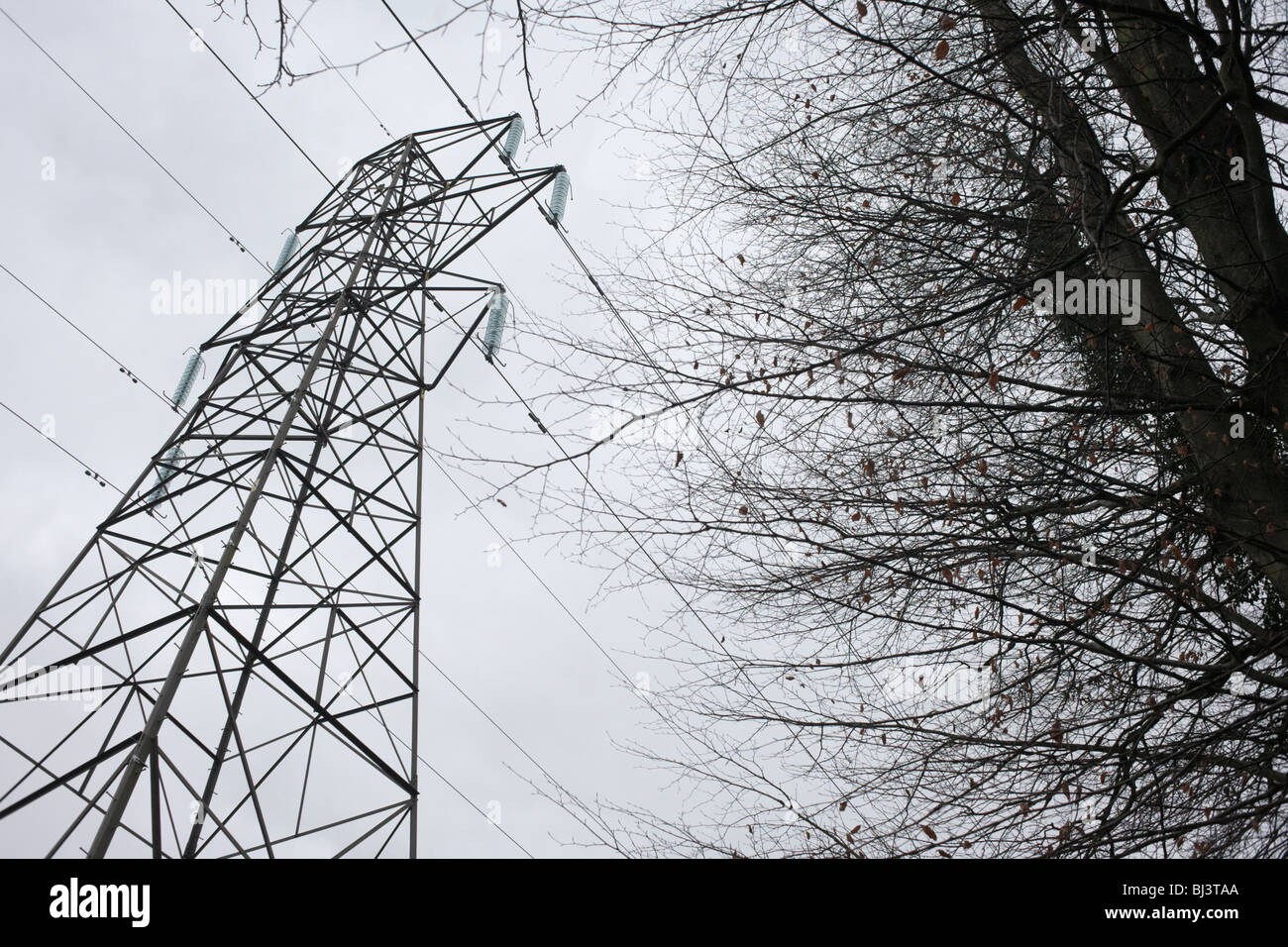 The dark outline of an electricity pylon stands over a gloomy winter sky in woodland near Wrington North Somerset England Stock Photo