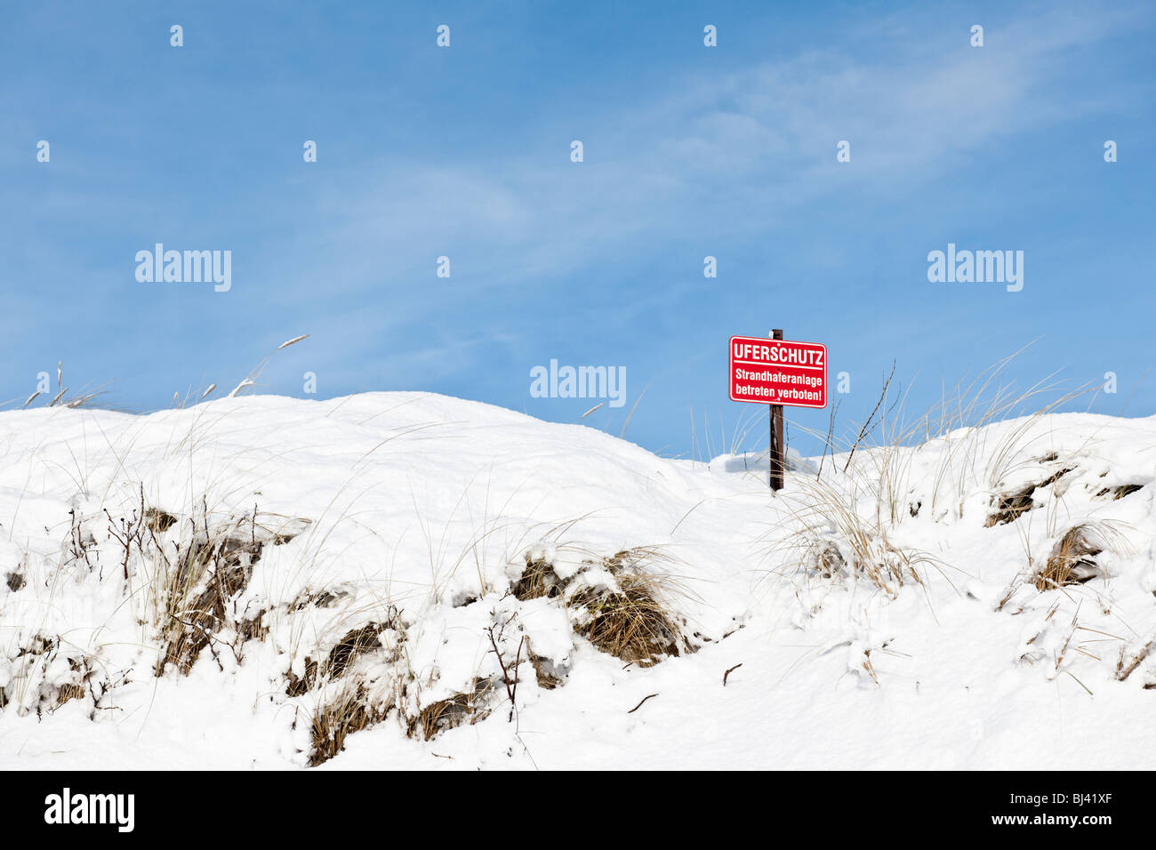 Snow-covered dunes with beach grass as a bank protection, North Sea island of Foehr, North Frisian islands, Schleswig - Stock Image
