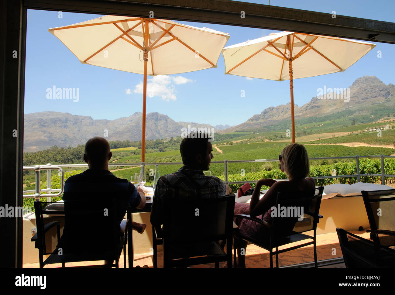 Table for three overlooking vines on the slopes of the Helderberg Mountain close to Stellenbosch in the western - Stock Image