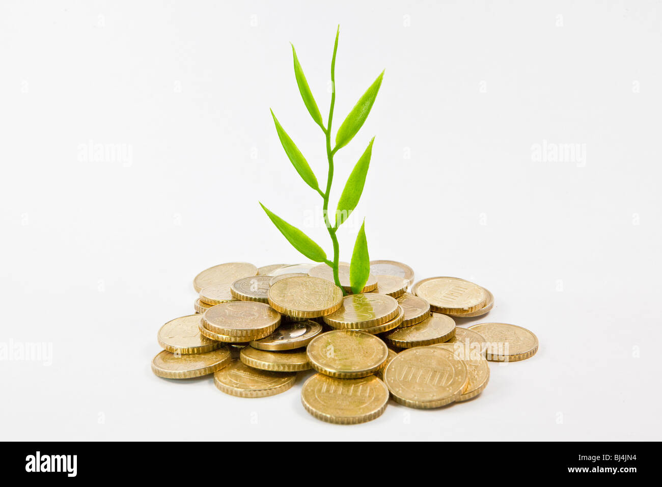 Plant, coins, symbolic image for a successful investment, growing returns - Stock Image