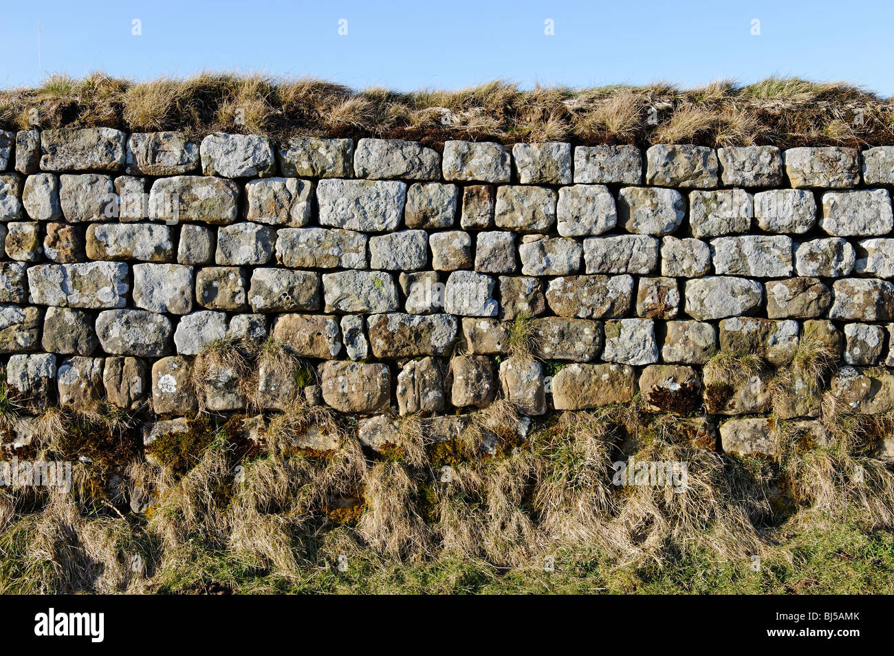 Detail of stonework on Hadrian's Wall - Stock Image