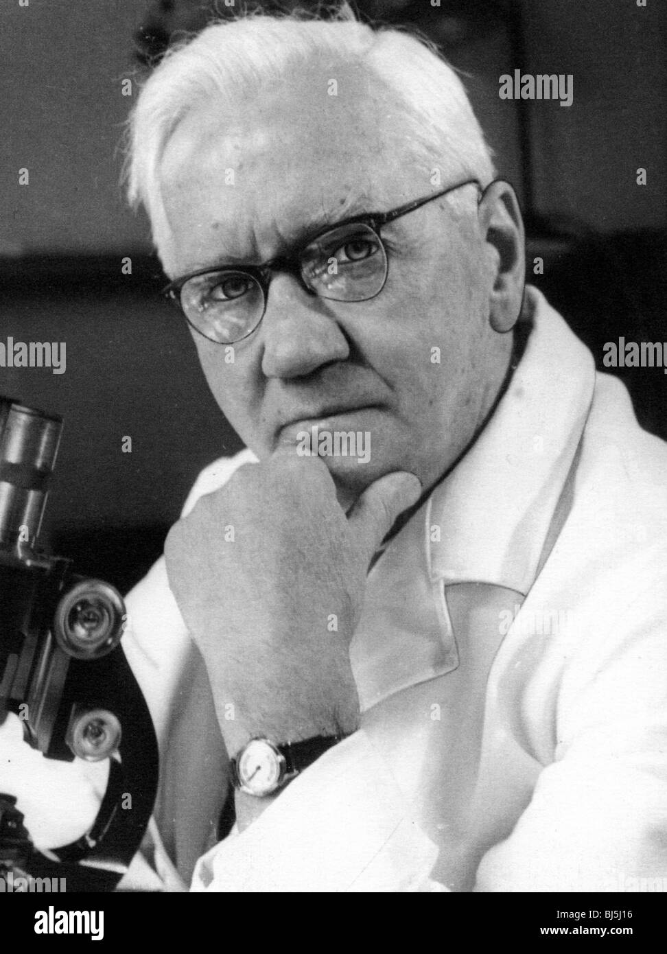 SIR ALEXANDER FLEMING - Scottish bacteriologist and discovere of penicillin  (1881-1955) - Stock Image