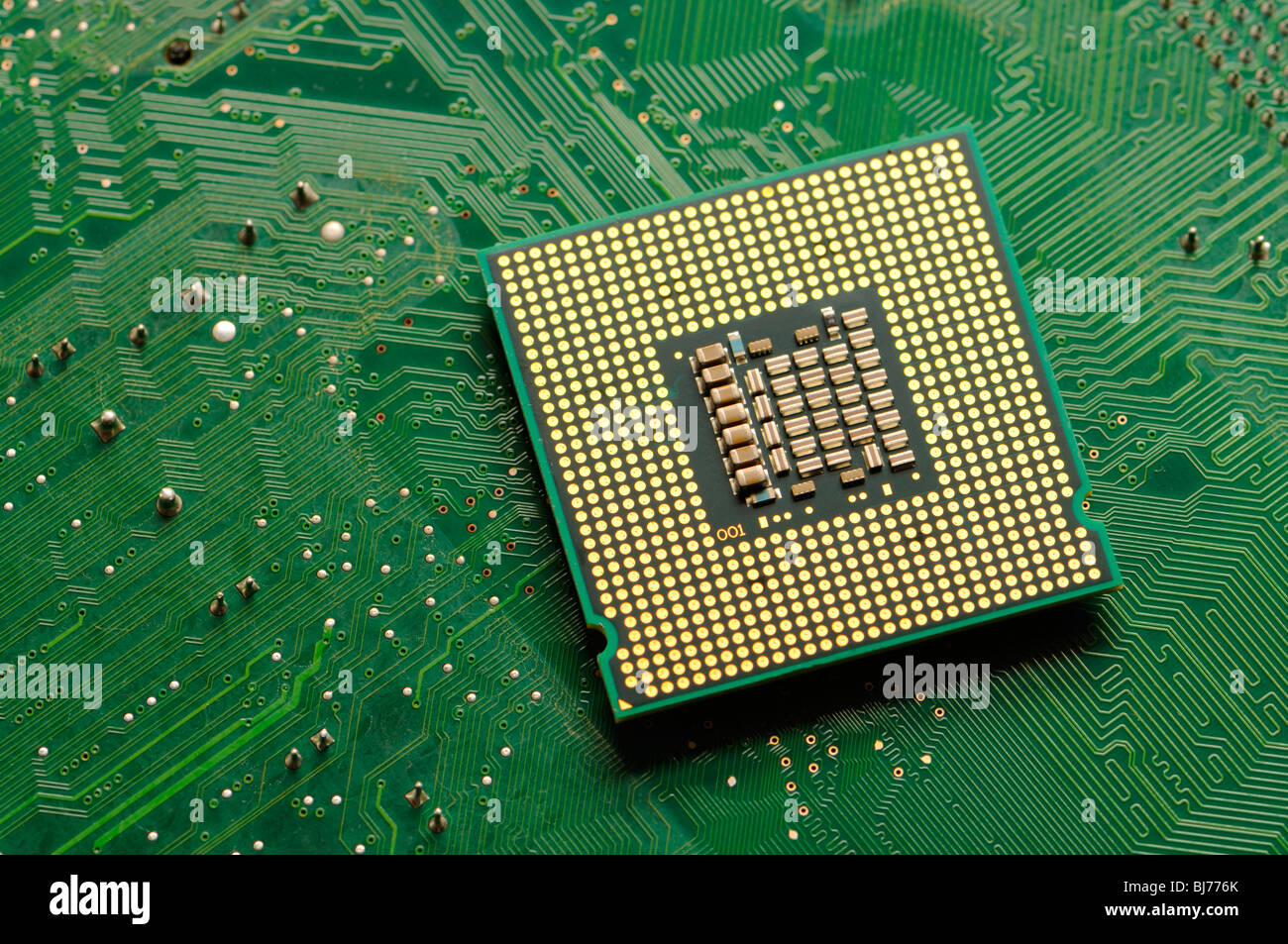 Computer processor on circuit board - Stock Image