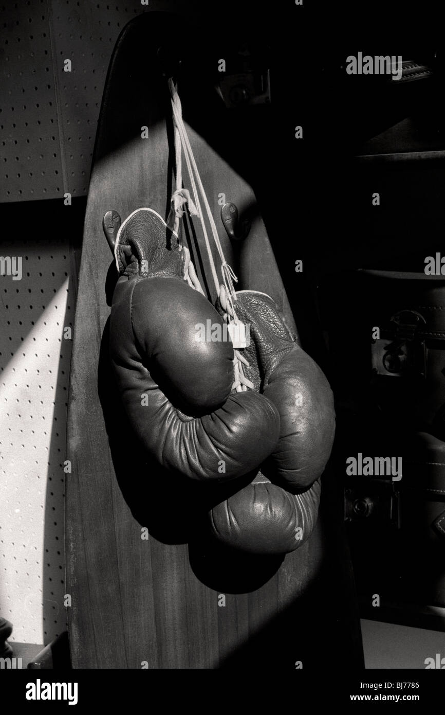 boxing gloves hanging from surf board - Stock Image