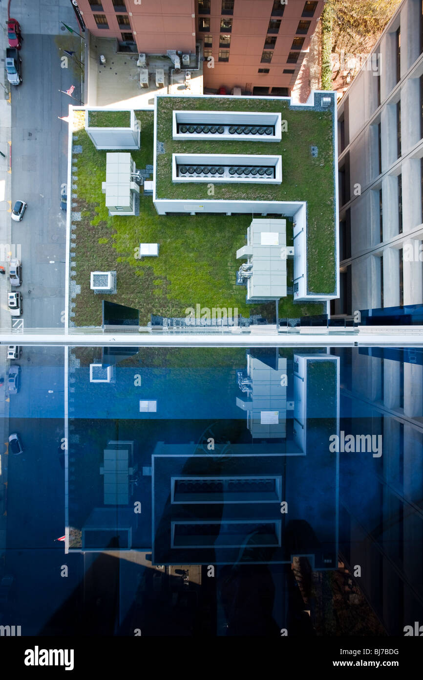 Green Roof of Olive 8 Condominium and Hotel - Downtown Seattle, Washington. Reflection of the roof in the blue tinted - Stock Image