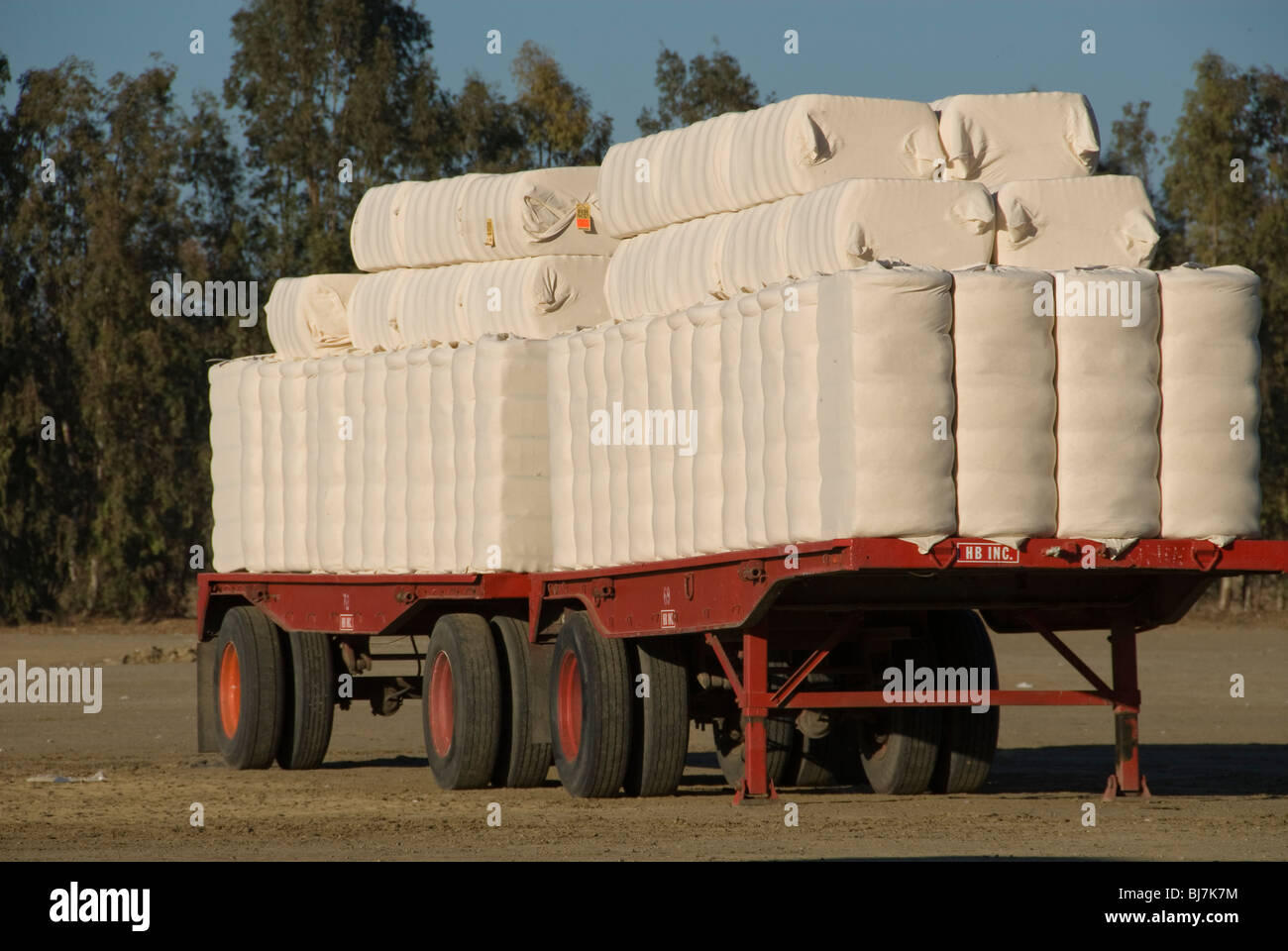A truck trailer with cotton bales. - Stock Image