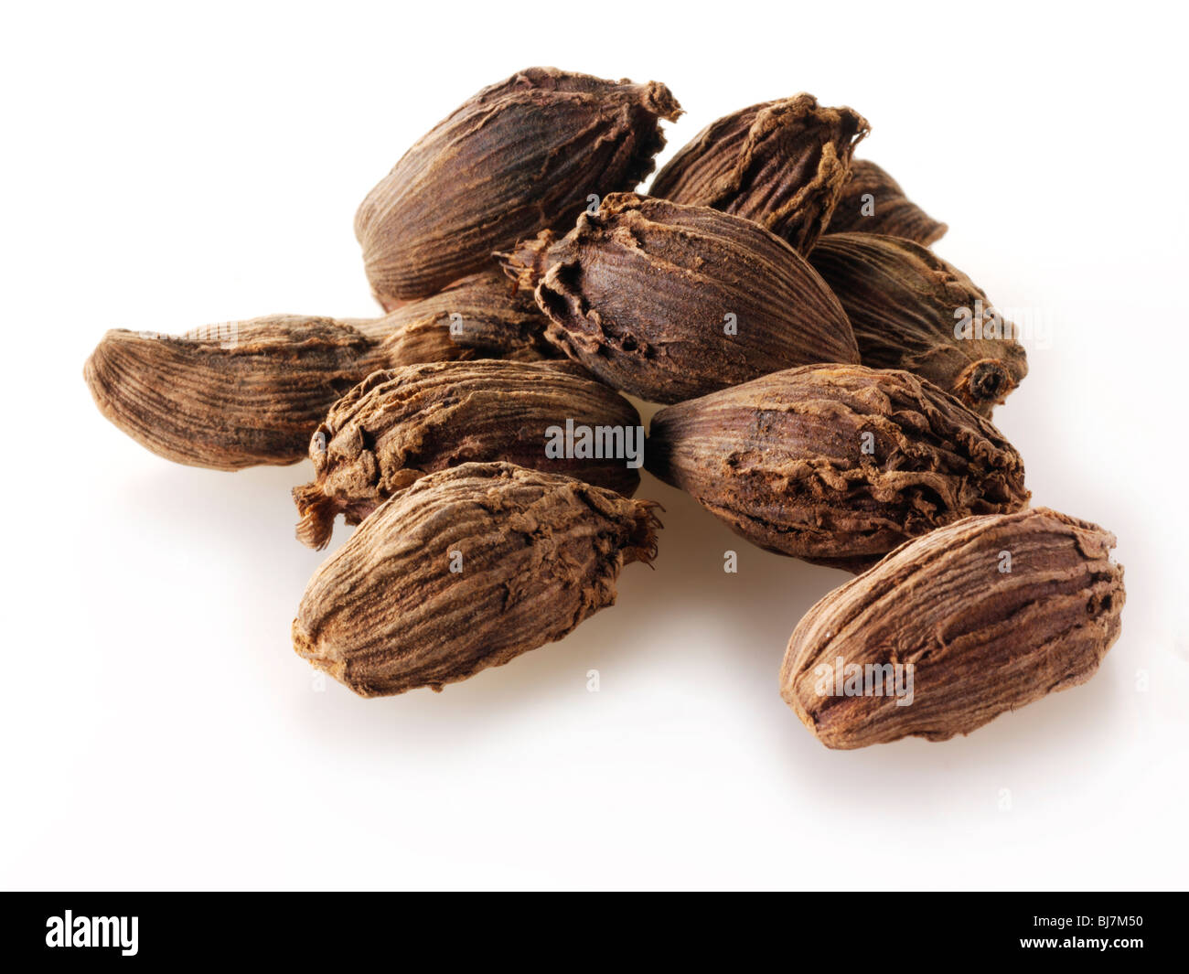 Whole black cardamoms spices  composed arrangement isolated against a white background - Stock Image