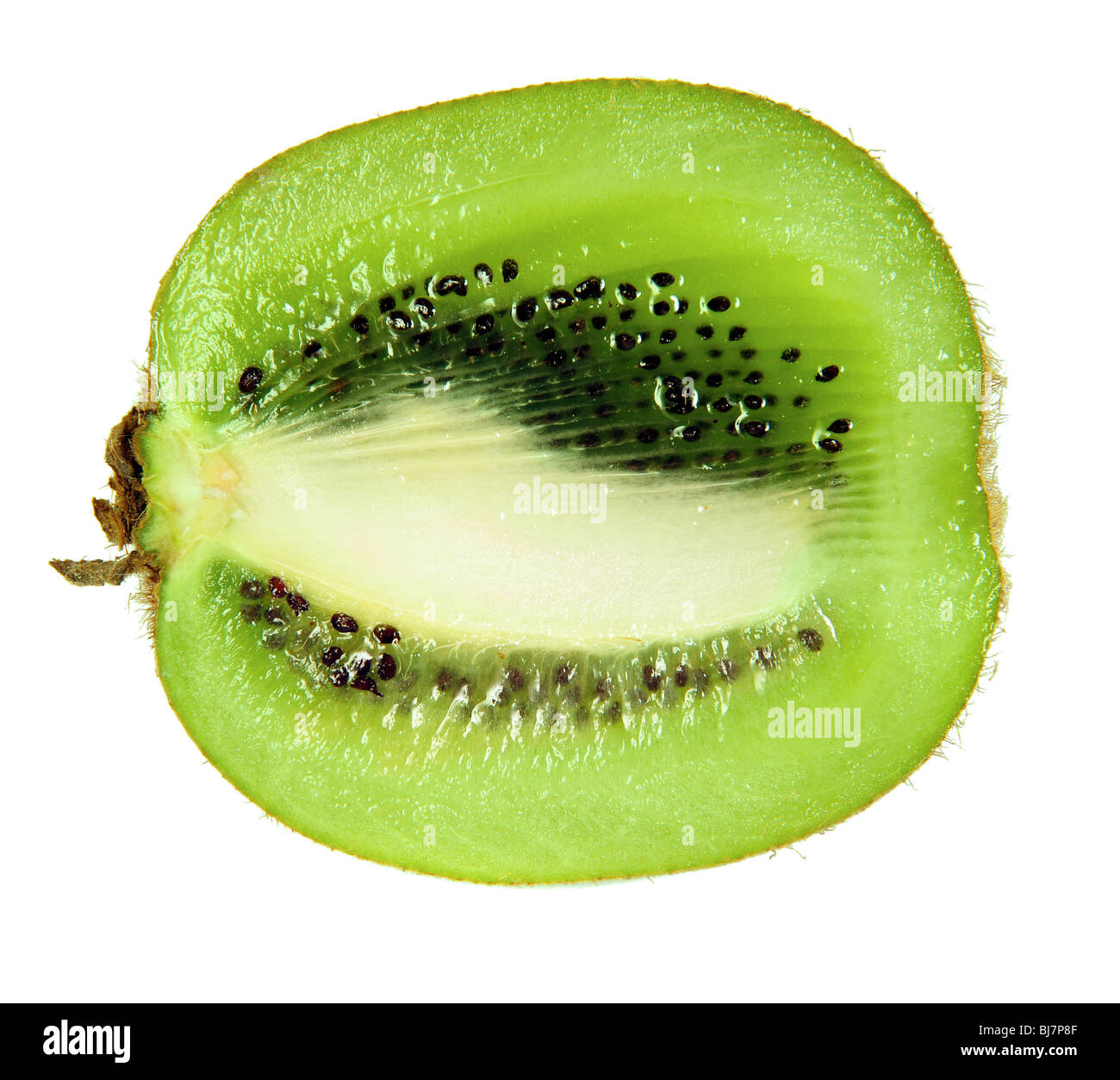 Slice of kiwi fruit isolated on white - Stock Image