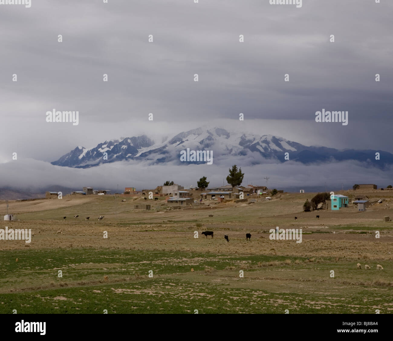 small settlement and cows at foot of majestic mountain, alto plano, bolivia - Stock Image