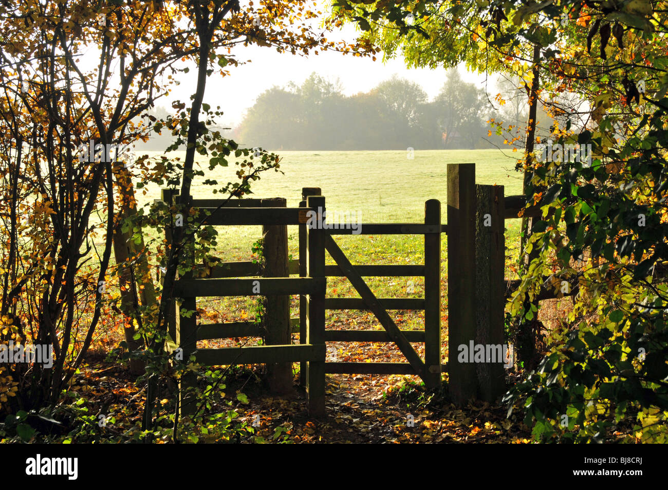 Autumnal colours public footpath kissing gate entering farmers field - Stock Image