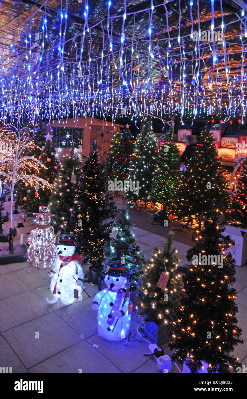 Garden Center indoor display of Christmas trees and lights for sale