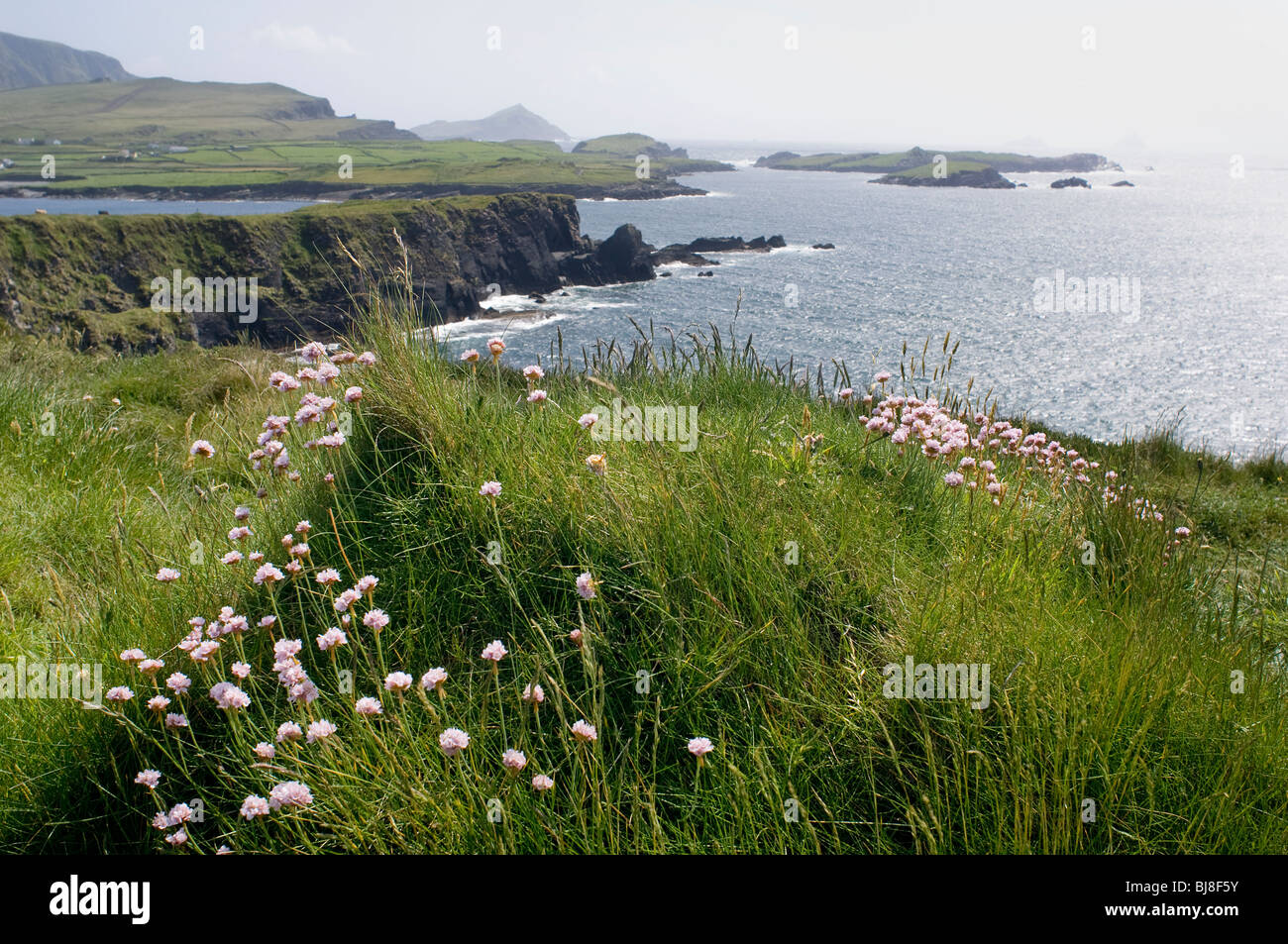 County Kerry Coast - John Gollop - Stock Image