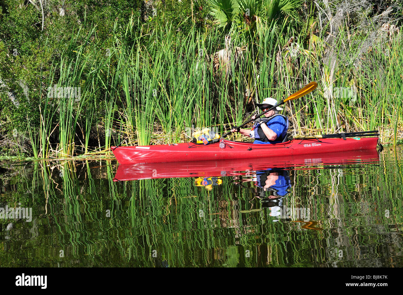 A woman paddles past a clump of reeds on Spring Garden Lake - Stock Image
