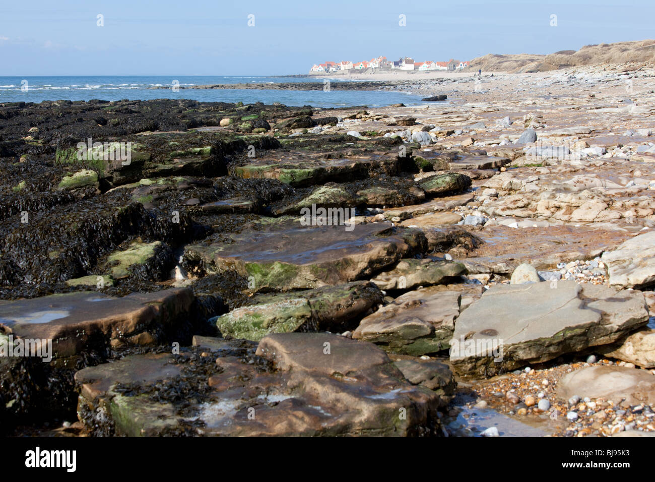 Seaweed covered rocks on the beach at Wimereux, Pas-de-Calais Stock ...
