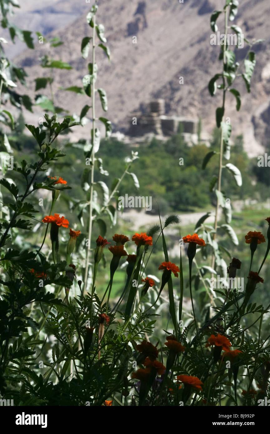 Altit Fort Hunza Karakoram Karimabad Pakistan - Stock Image