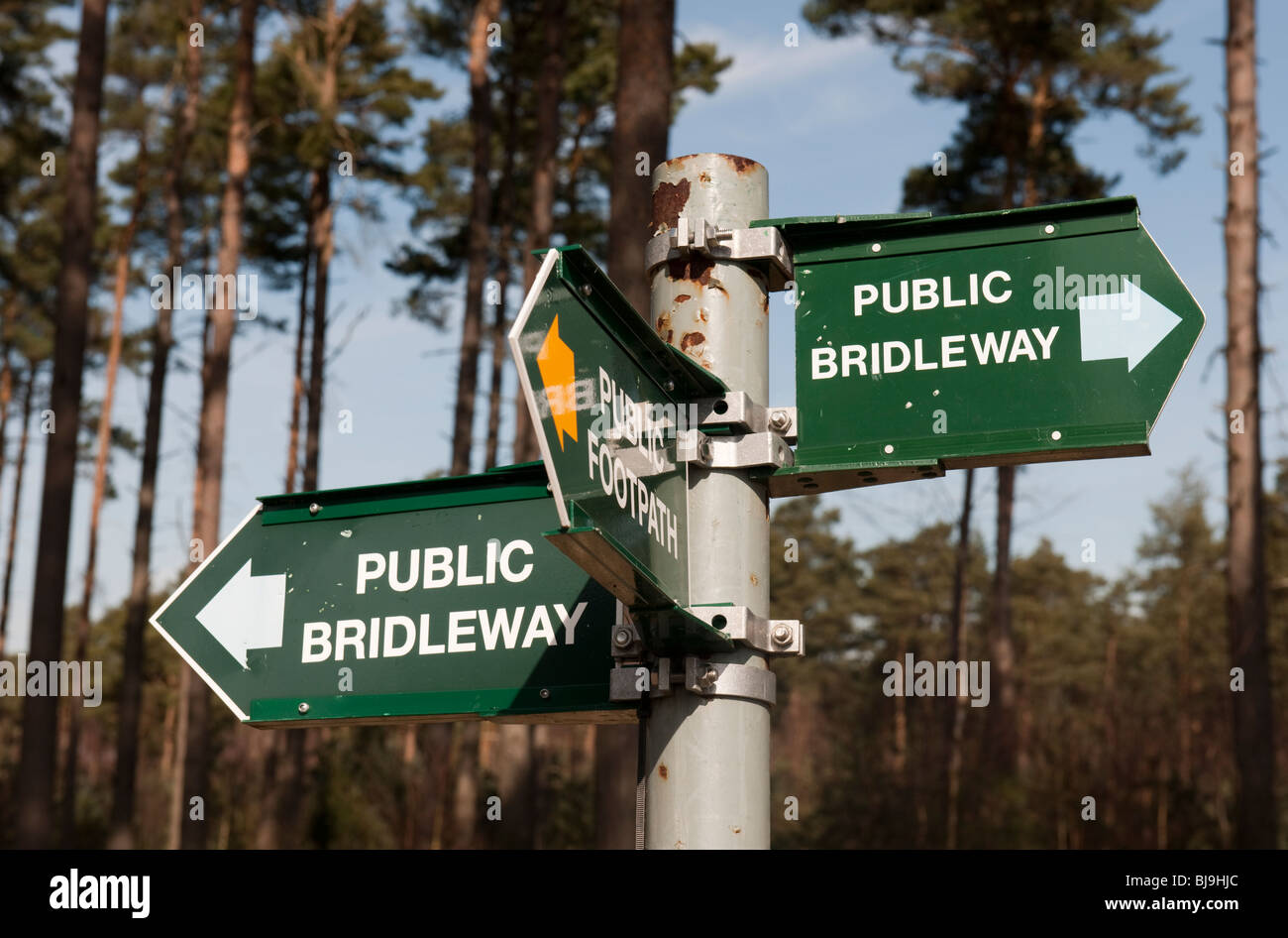 Public Footpath and Bridleway sign in Crowthorne Wood - Stock Image