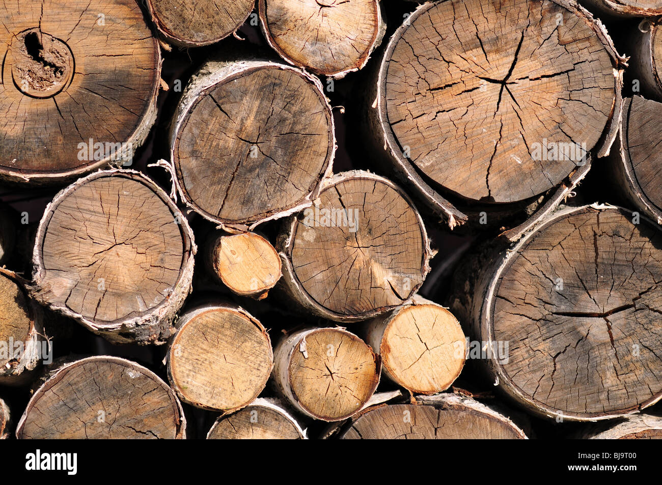 Pile of logs for firewood - Stock Image