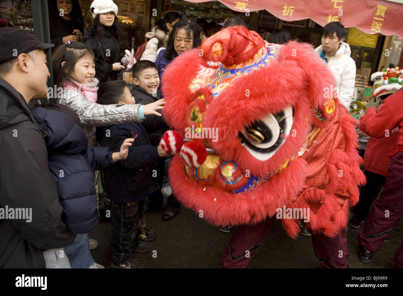 2010: Chinese New Year, Chinatown, NYC, Year of the Tiger. Chinese Lion dancers - Stock Image