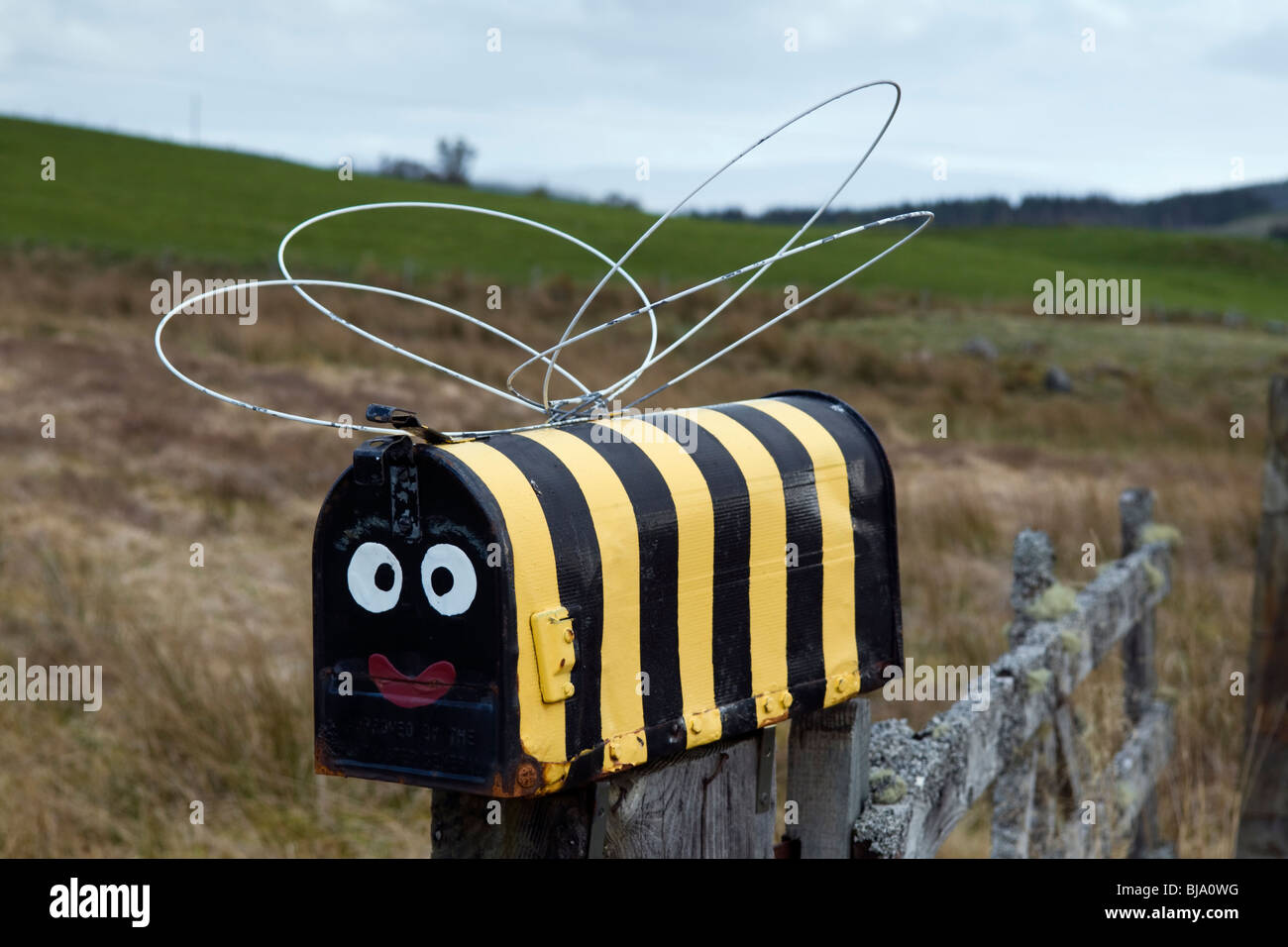 Personalised letter box on post painted in style of a bumble bee taken on the a839 near Lairg - Stock Image
