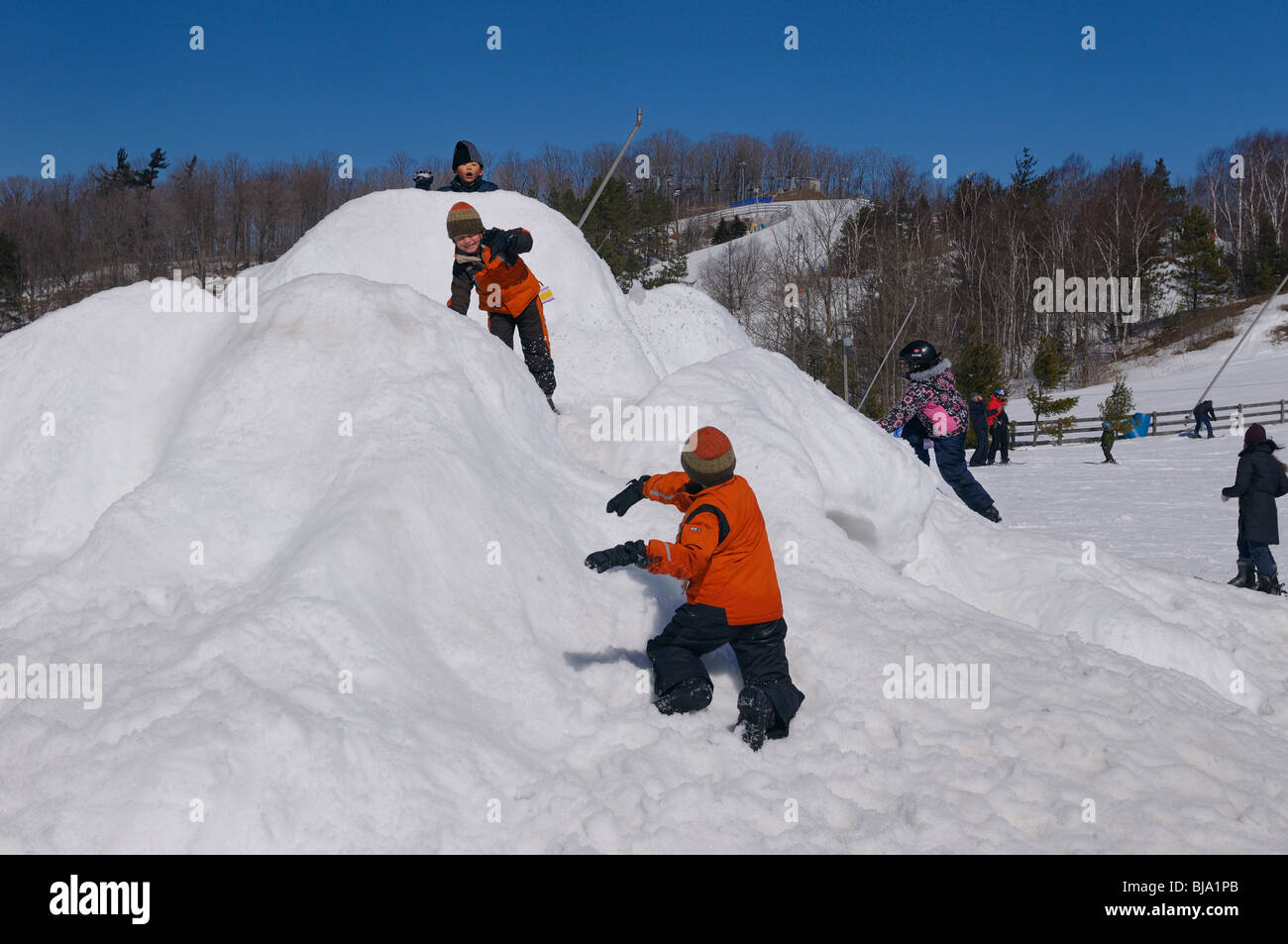 Playing children having a snow fight on a snow Castle at Lakeridge ski area Ontario in winter - Stock Image