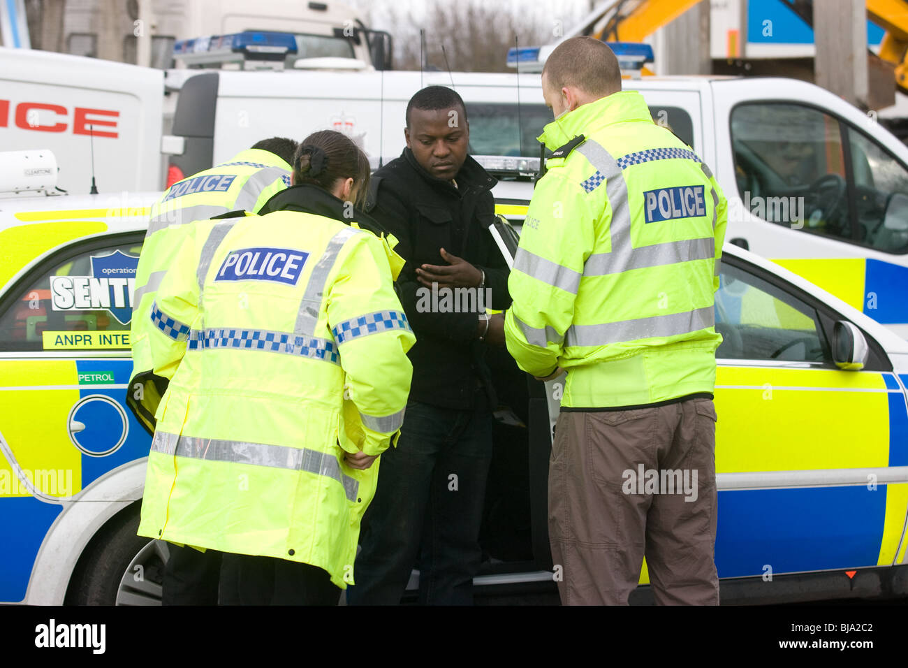 Police make an arrest - Stock Image