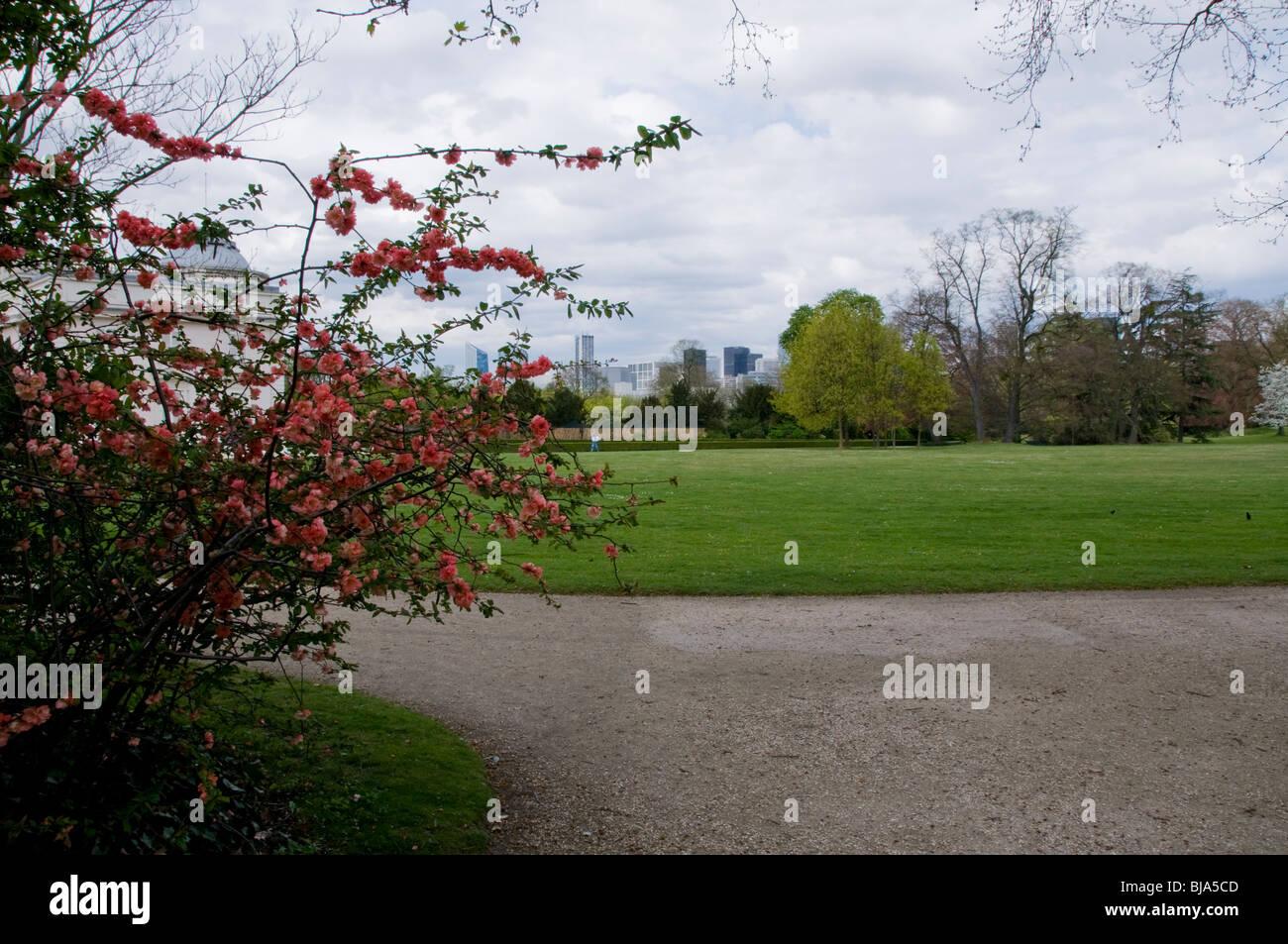 Paris, France, Urban Parks, Spring Landscape, People Visiting Bois de Boulogne Rose Garden Stock Photo