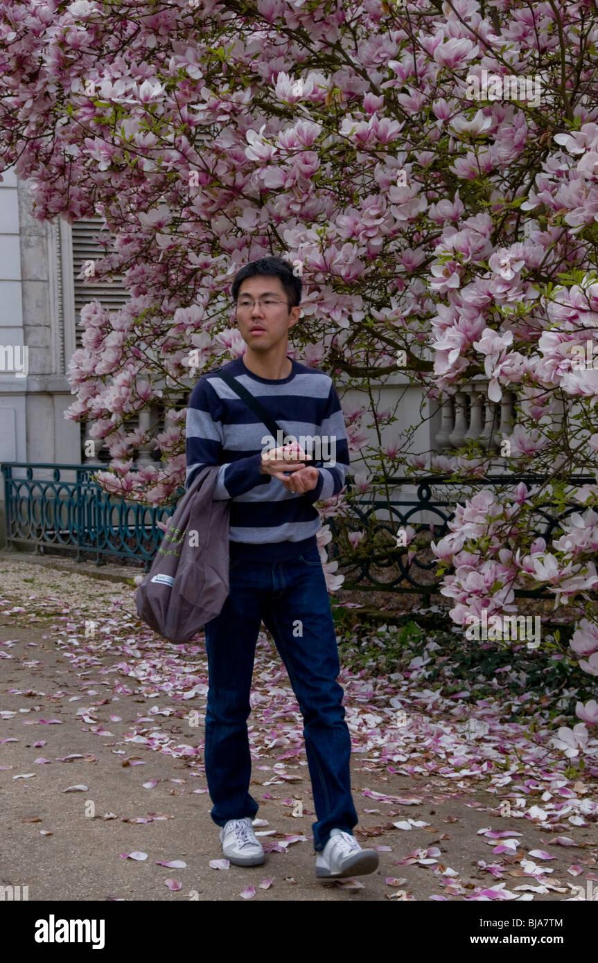 Paris, France - Young Adult Asian, Walking in park near Magnolia Trees, Outside, 'Bois de Boulogne' Park - Stock Image