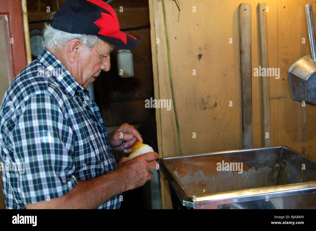 Staff of a sugar shack tasting hot maple syrup on an ice ball, Province of Quebec, Canada - Stock Image