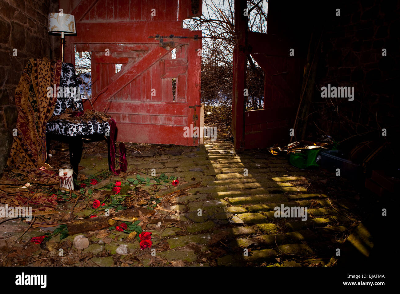Opulent decay - dead leaves on a chair and an scattered roses - Stock Image