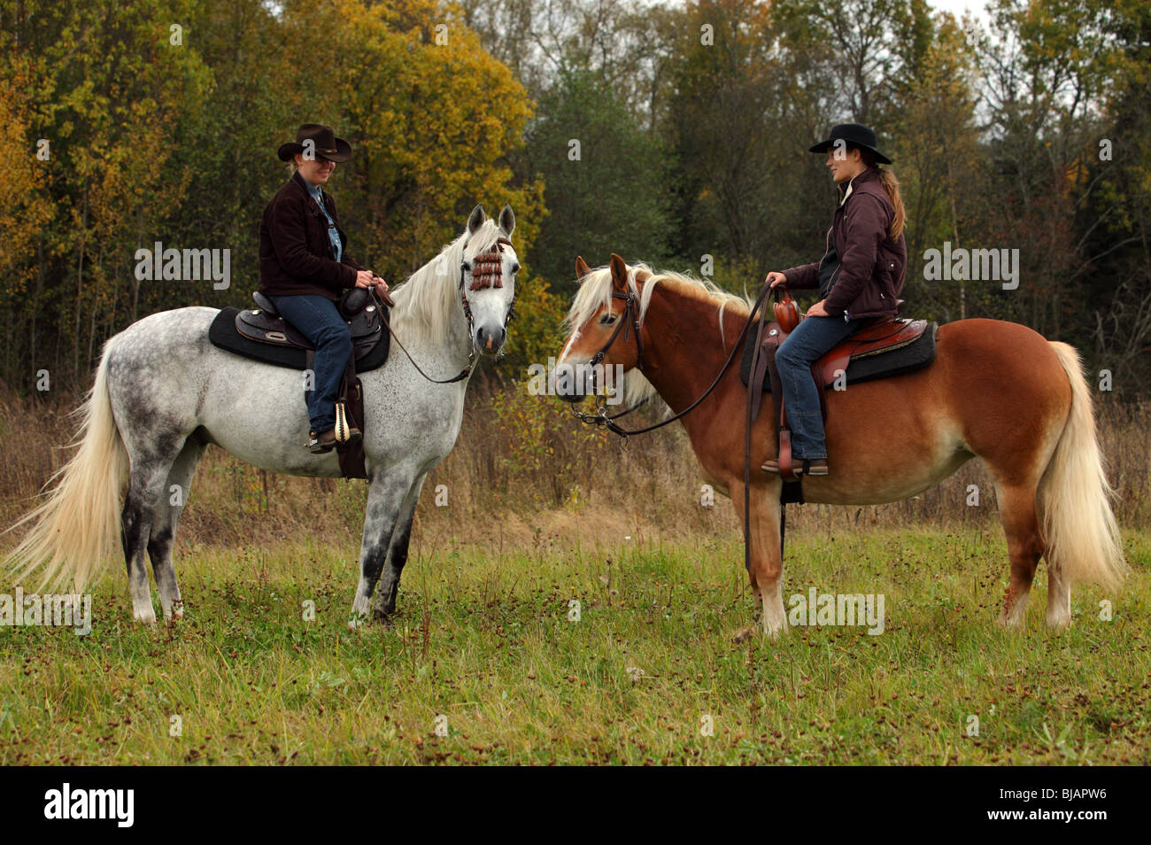 Two cowgirl and andalusian horse (Equus ferus caballus) Stock Photo