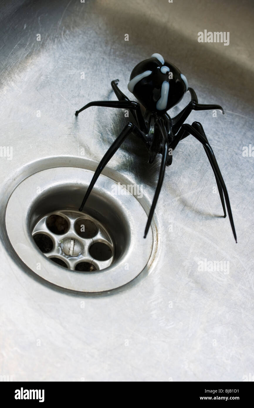 Glass spider near plug hole - Stock Image