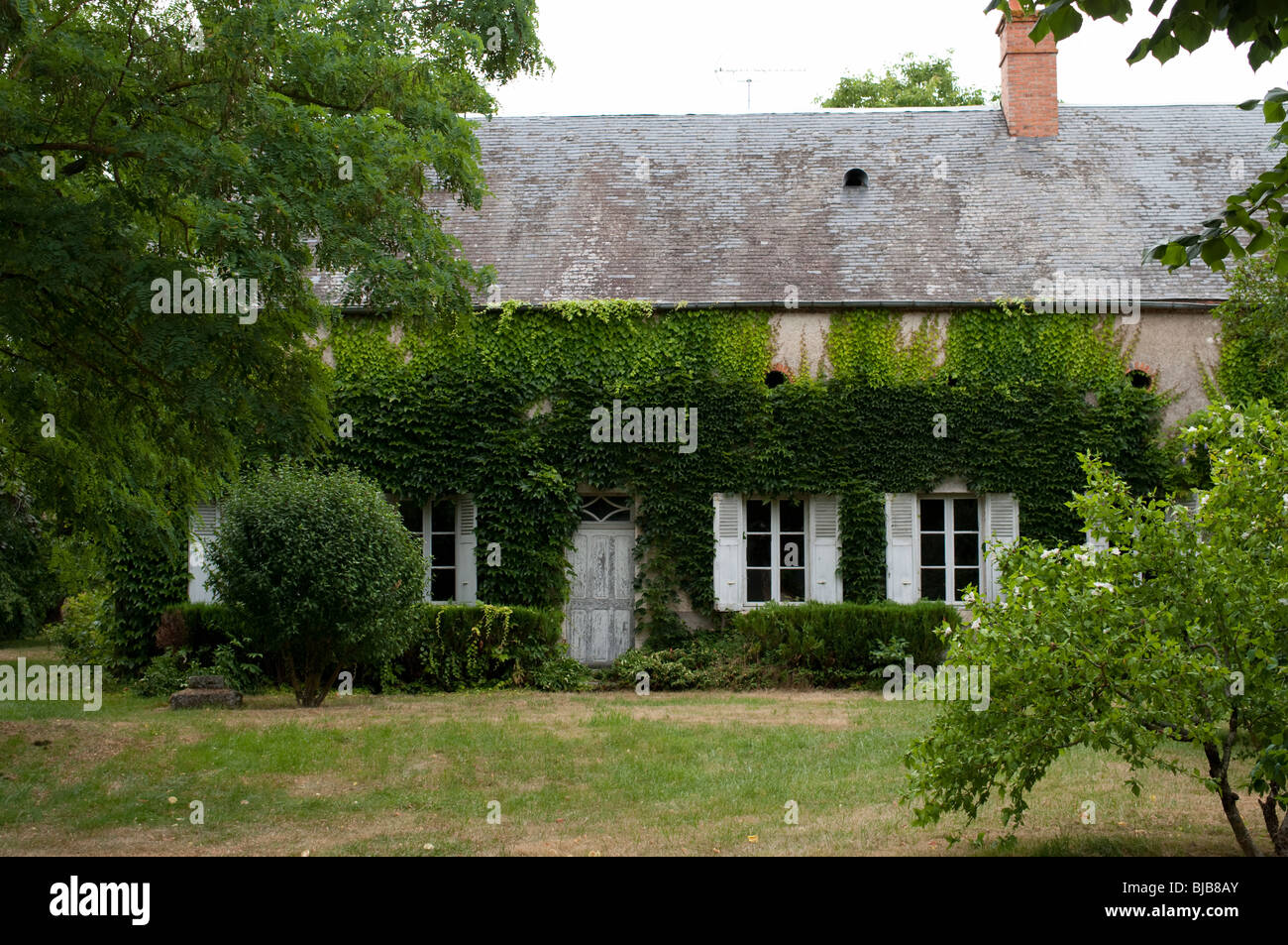 A charming old ivy covered cottage in saint satur cher france stock