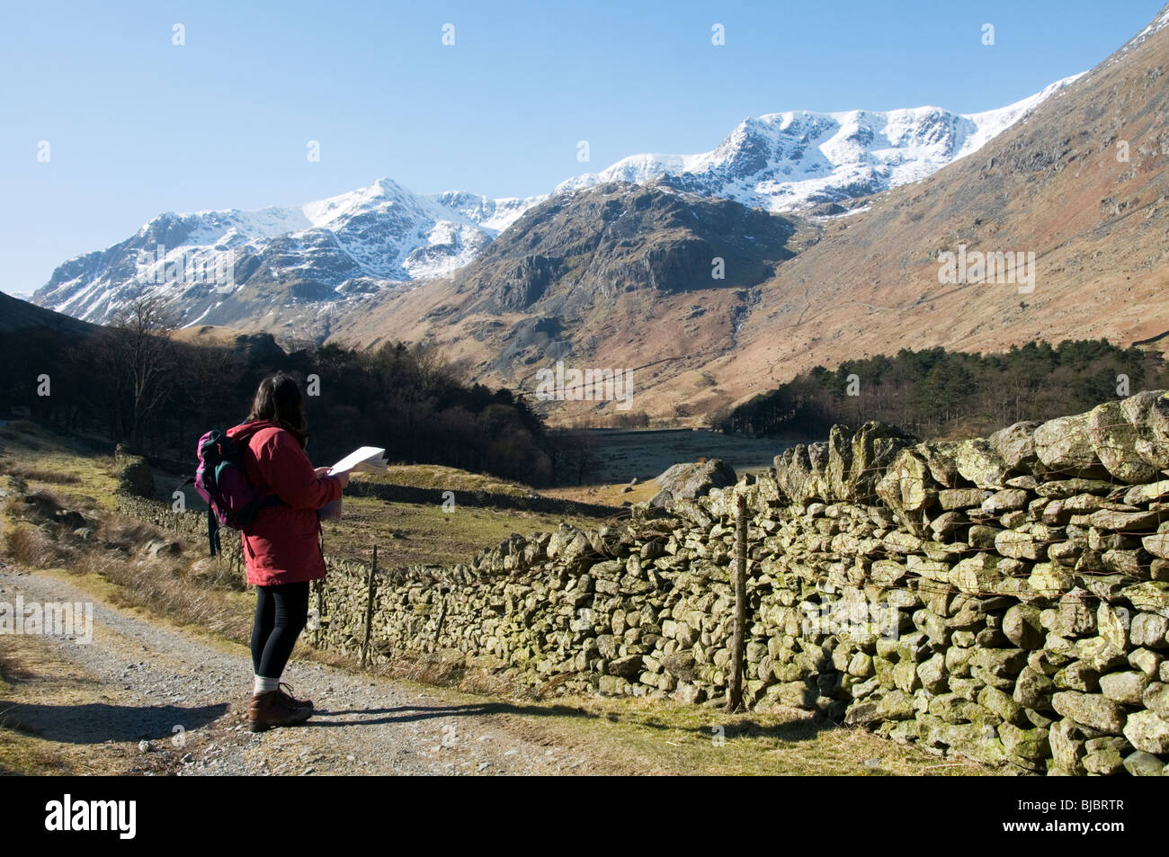 A walker consults a map in Grisedale in the English Lake District Stock Photo