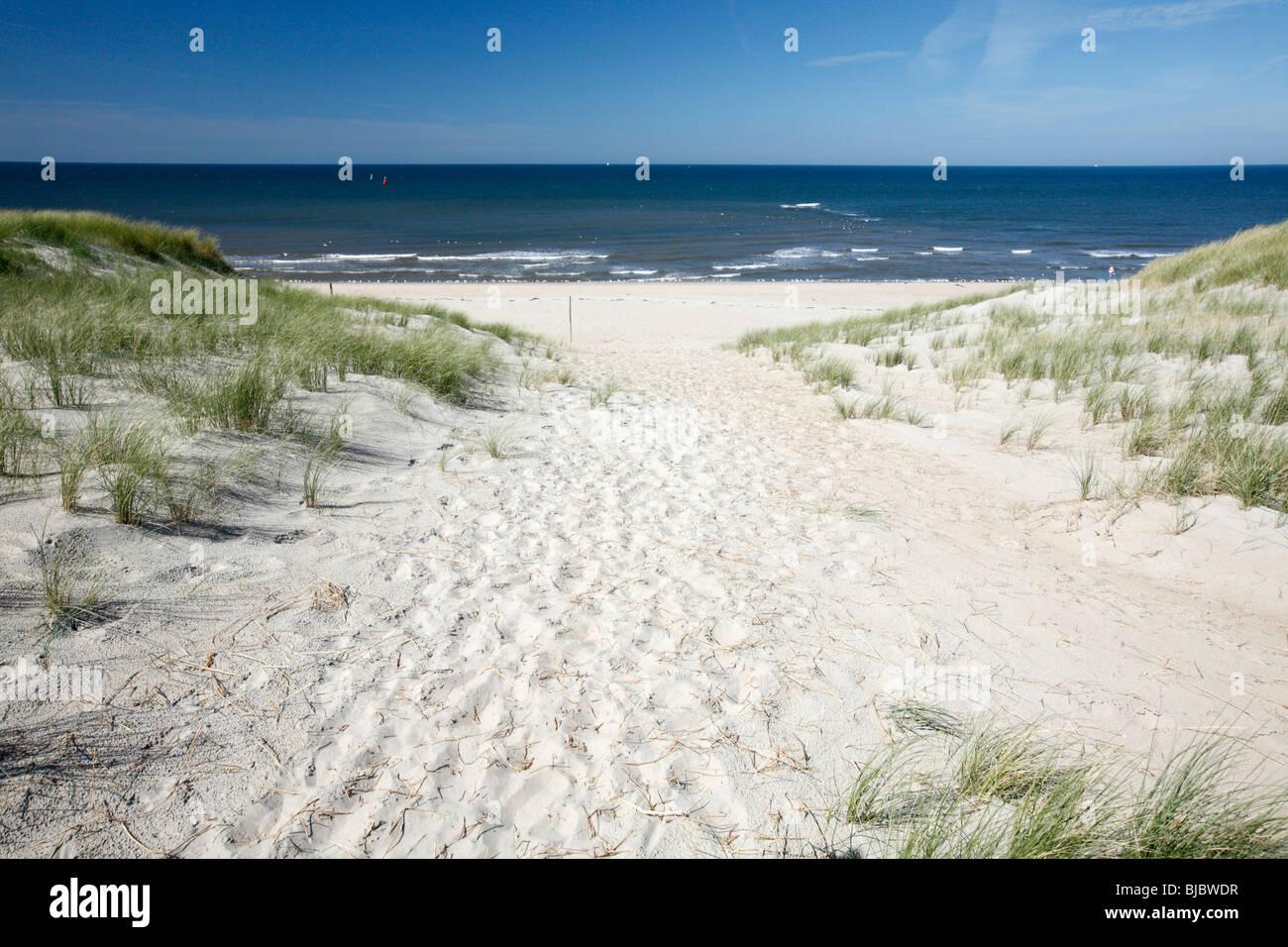 North Sea, beach and sand dunes, Texel Island, Holland - Stock Image