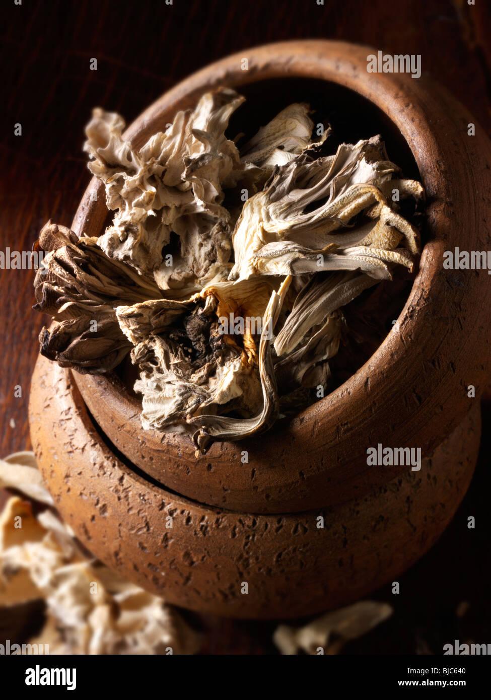 Dried Maitake mushrooms stock photos - Stock Image