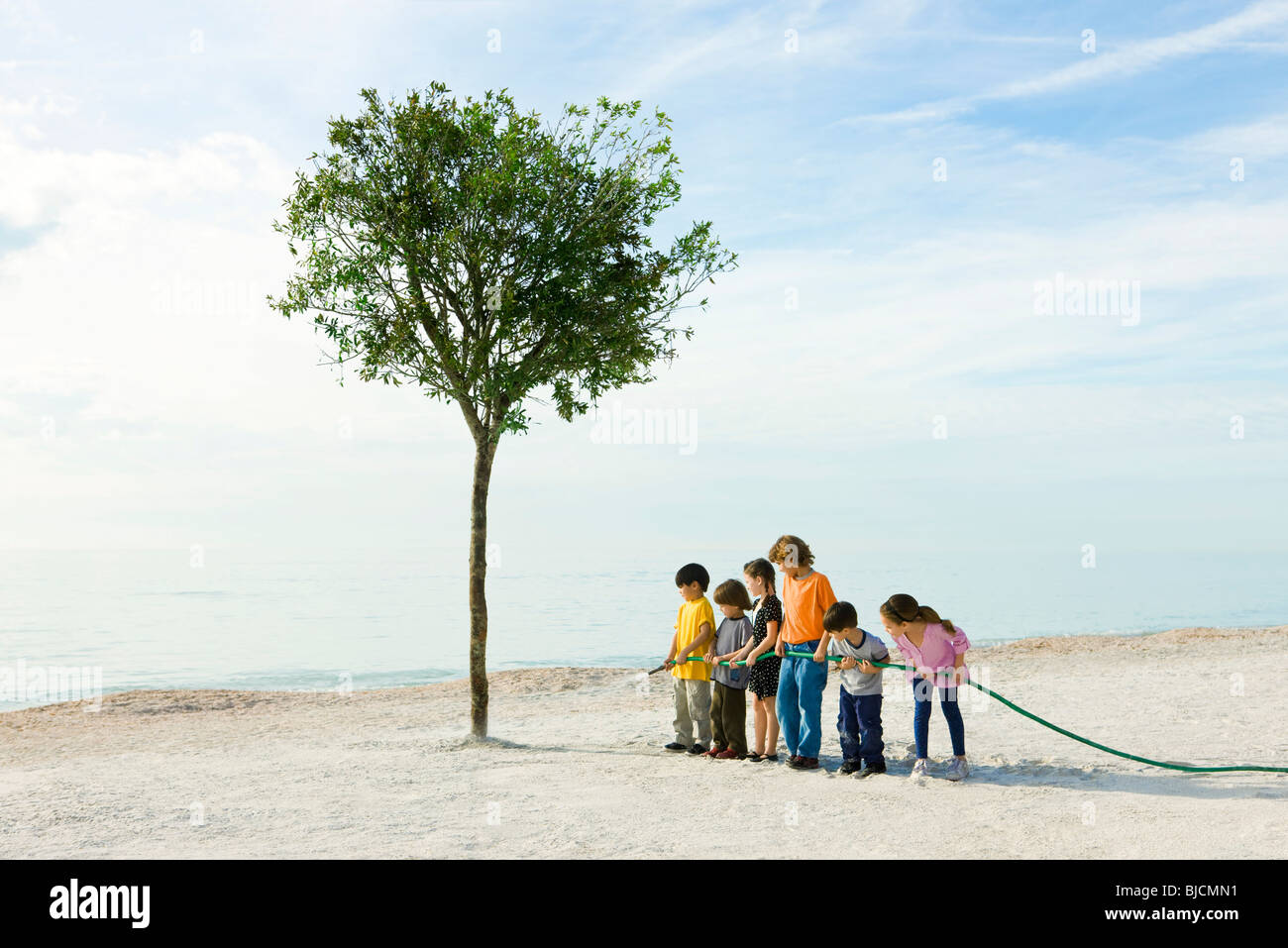 Ecology concept, children watering tree growing on beach - Stock Image
