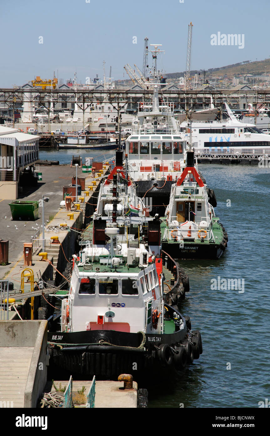 Port of Cape Town South Africa ocean going tugs pilot boats - Stock Image