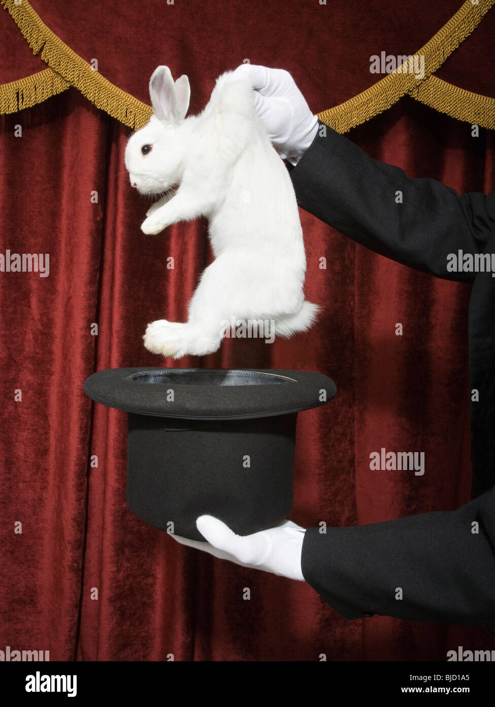 Out Of The Shadows Deviant Moon Tarot: Magician Pulling A Rabbit Out Of A Hat Stock Photo
