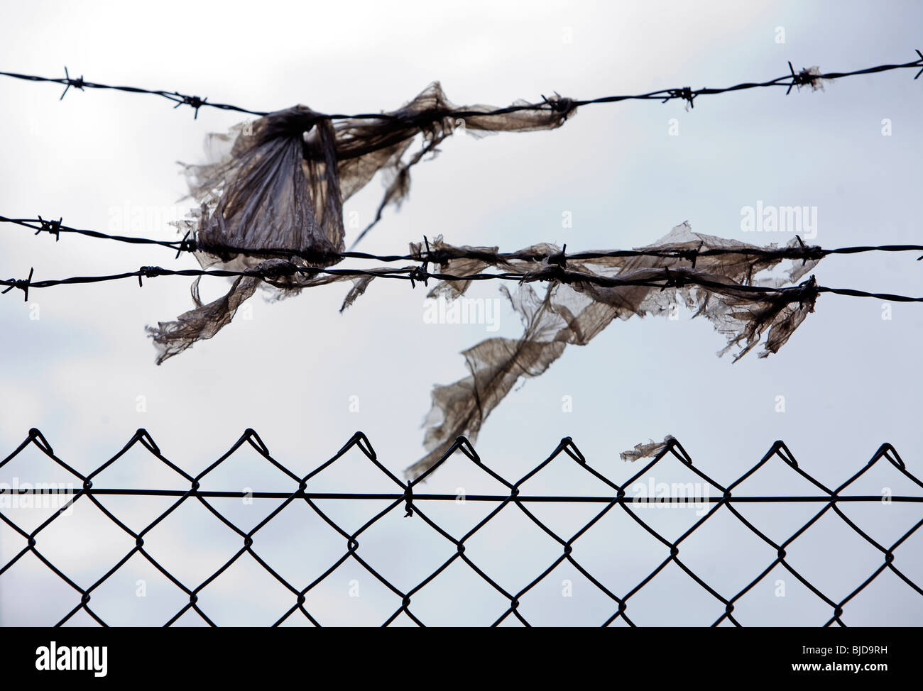 Bobbed Wire Fence Stock Photos & Bobbed Wire Fence Stock Images - Alamy