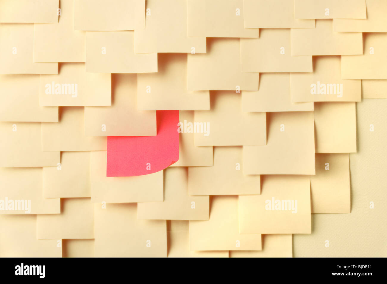 Arrange Postit notes with one of a different color - Stock Image