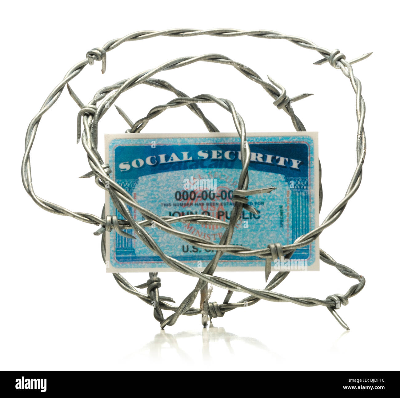 Social security card surrounded by barbed wire. - Stock Image