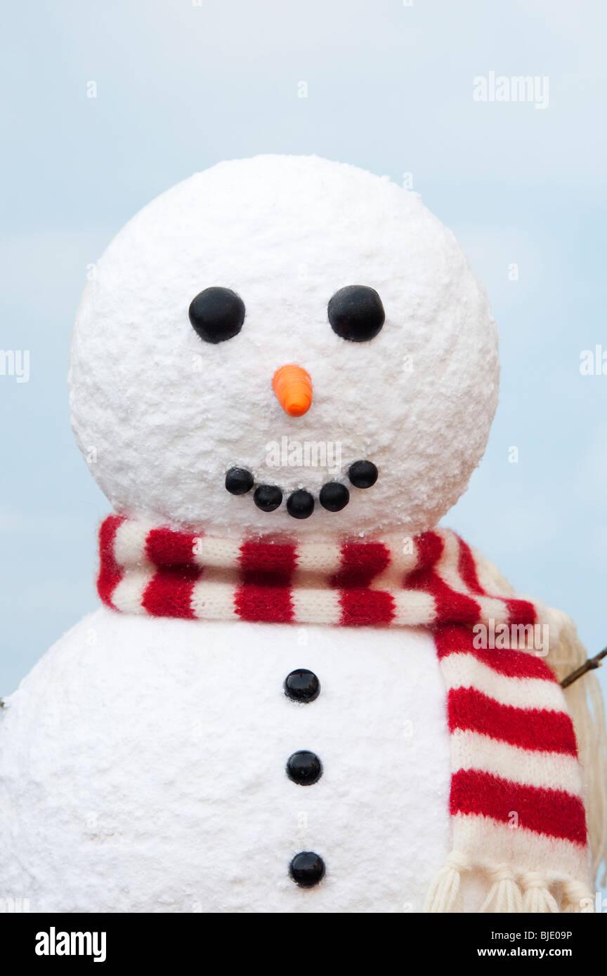 Snowman portrait - Stock Image