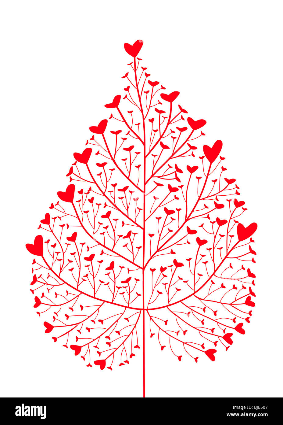heart tree, heart leaf - Stock Image