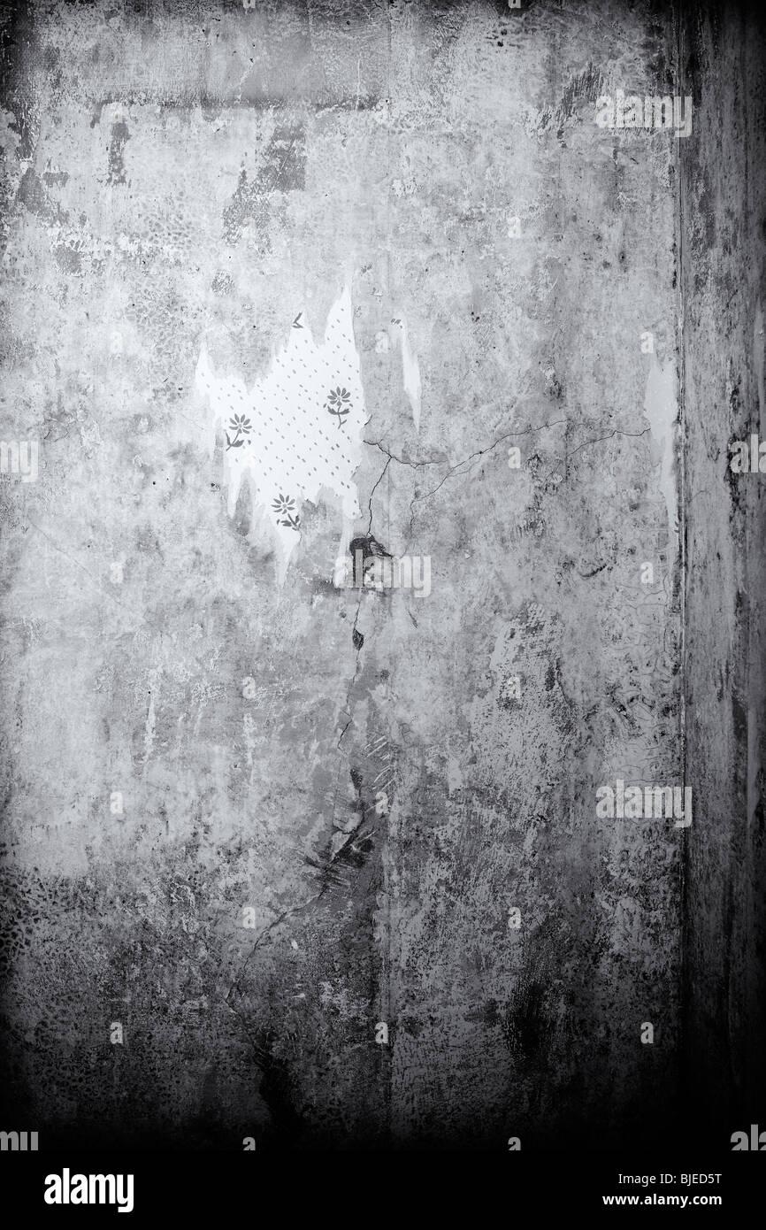 Wallpaper, rising damp - Stock Image