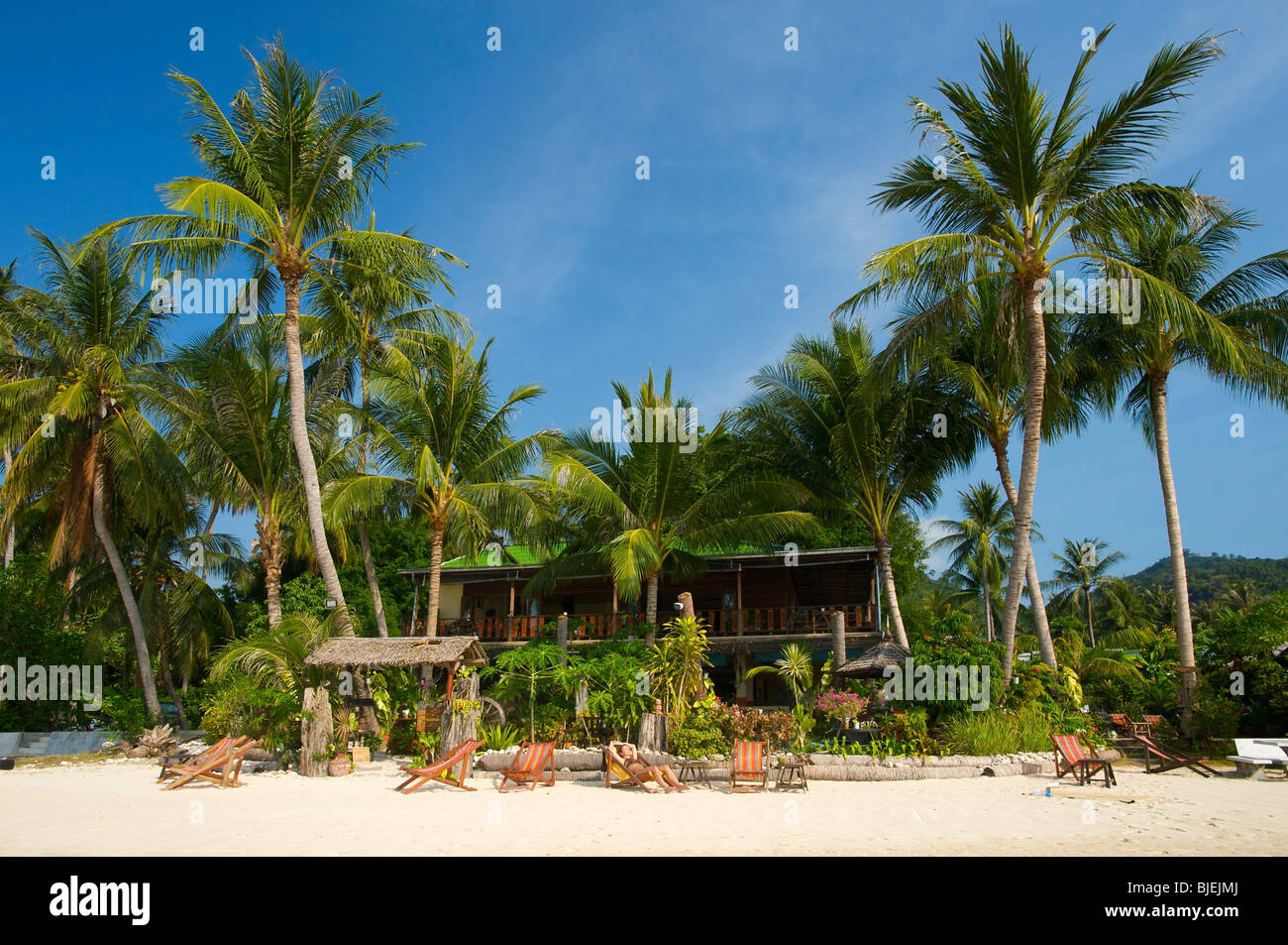 Palm beach, Ko Samui, Thailand - Stock Image