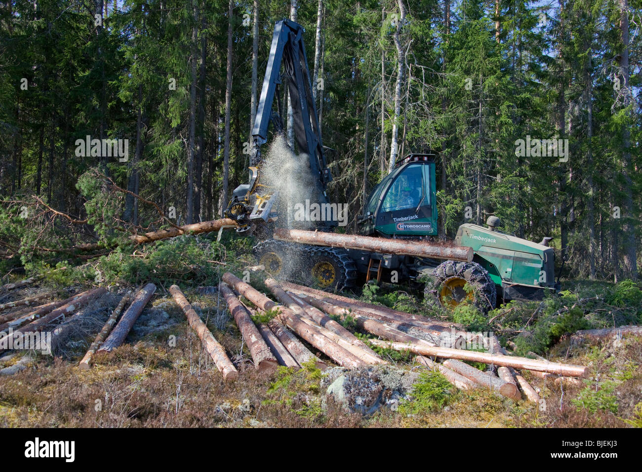 Harvester at work. - Stock Image